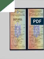 Diplomă de Master AAP MS.pdf