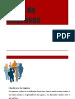Aula 2 - Tipos de Empresas