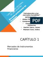 capitulo-1-BURSATILES.pptx