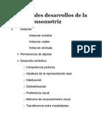 Principales Desarrollos de La Etapa Sensomotriz