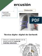 Percusión de área cardiaca.pptx