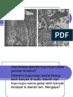 PPT Seleksi Alam
