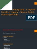 Anatomia Chirurgicala a Regiunii Faciale a Capului