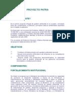 Proyecto Patra