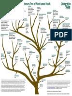 Evolutionary Tree of Plant-based Foods