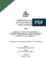 """""""Incidencia y Causas de Anemia Ferropenica"""