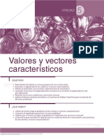 _lgebra_Lineal_Serie_Universitaria_Patria.pdf