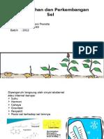Pertumbuhan dan Perkembangan Sel Tumbuhan