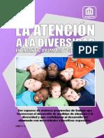 ANFAP-MAGISTER Atencion a La Diversidad I y P 09