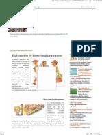 CIPA Carahue_ Elaboración de Bioestimulante Casero