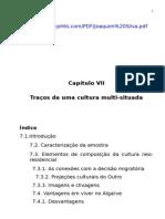Cap. VII Traços de Uma Cultura Multi-situada
