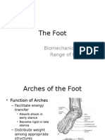 2  foot biomechanics and rom
