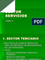 SECTOR SERVICIOS.ppt