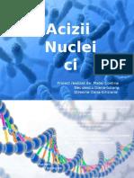 CHIMIE Acizi Nucleici