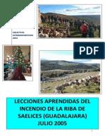 Conclusiones lecciones aprendidas del incendio de La Riba de Saelices-Guadalajara 2005