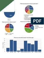 literacy project pdf