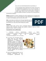 Factores de Desarrollo de Los Microorganismo1 Cosito