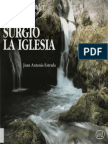 Estrada, Juan Antonio - Para Comprender Como Surgio La Iglesia