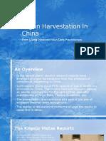 Organ Harvestation in China - From Living Innocent Falun Dafa Practitioners