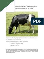 Efecto Del Uso de La Enzima Amilasa Para Mejorar La Productividad de La Vaca Lechera