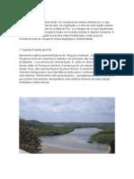 Relatório de Campo Ambiental