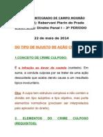 Aula - Tipos Penais Culposos-22!05!2014