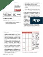 CARTILLA COMPLETA minas.docx
