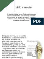 Líquido Sinovial