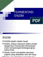 FERMENTASI ENZIM