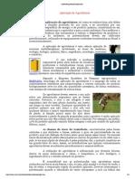 acidente_agrotoxico_aplicação