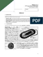 8°-2014-Ficha-4-Células.pdf