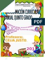 PCA 2015 5º GRADO 2015