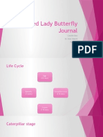 painted lady butterfly journal