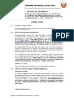 TDR   CONSULTORIA IE 07 SAN MIGUEL.doc