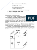 Tema 4.Mecanismul Cursului Valutar.[Conspecte.md]