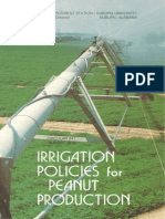 Irrigation Policies for Peanut Production