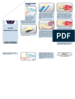 Brosur Cara Penggunaan Ovula