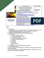 PLFJF 416PR Riesgo Laborales Protocolo