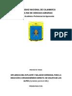 proy.tesis.final ( 2º version).docx