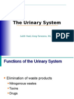 urinary.ppt