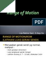 Range of Motion (ROM)