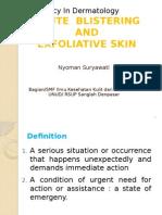 12 Emergency Skin Disease_lecture_2014