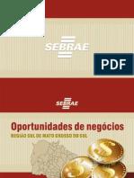 Oportunidades de negócios Reg Sul  3.pdf