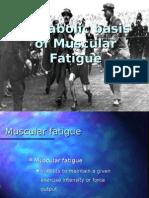 2. Muscular Fatigue