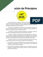 Declaración de Principios - Sector Privado