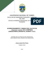 Informe Practicas Jimmy Polo Corregido