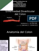 Diapositivas Enf Diverticular Expo