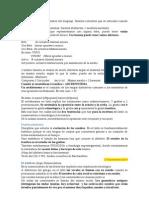 Lingüística Latina I