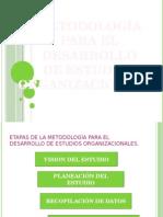 2. Organización - Metodología Organizacional