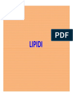 04lipidi.pdf